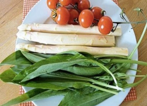 verdure primaverili