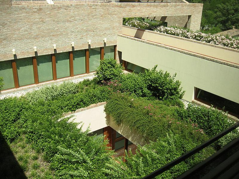 Come realizzare un giardino pensile in 5 passi for Realizzare un giardino