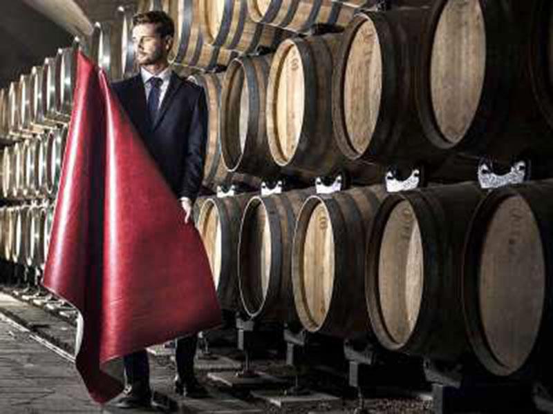 pelle bio dal vino